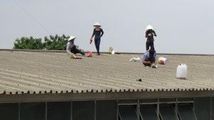 Lắp mái tôn tại quận 1
